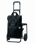 Walking-Chair-Bag